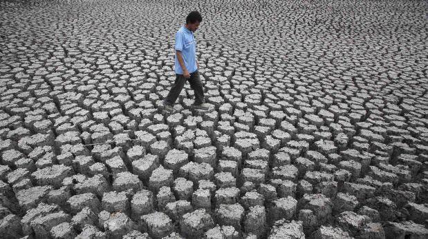 Con una red de monitoreo de áreas protegidas predicen cómo afectará a Chile el cambio climático
