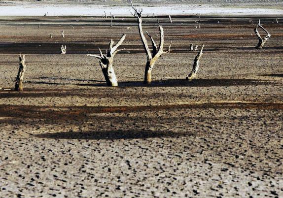 Crisis del agua en Latinoamérica anticipa emergencias sanitarias y sequías