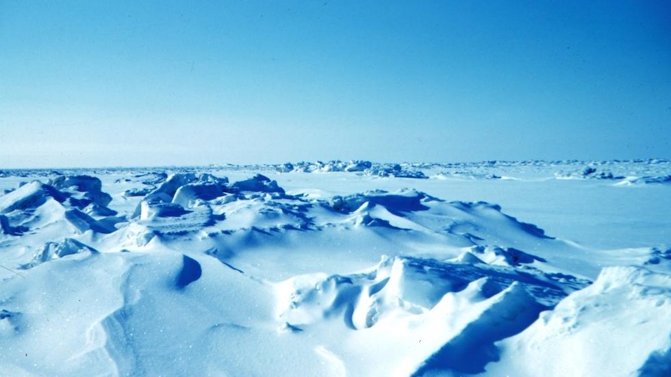 Antártica: la primera en sentir los efectos