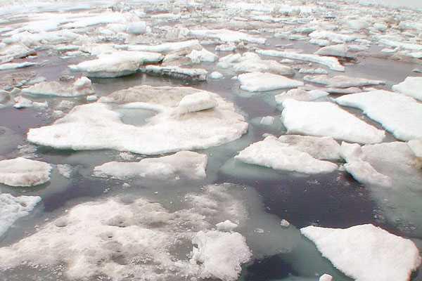 Estudio afirma que milenario cambio climático en el Atlántico Norte no ocurrió por icebergs