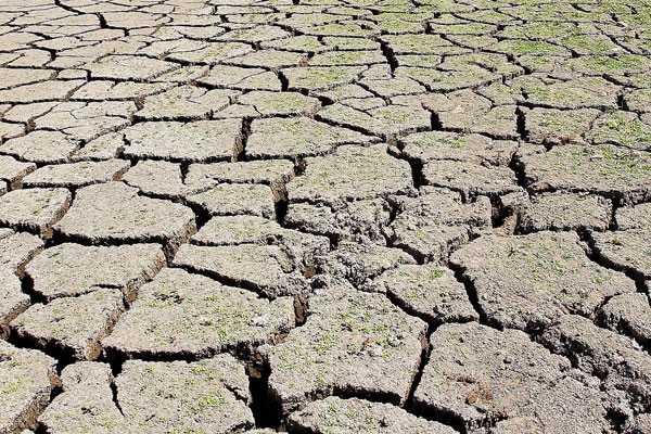 El impacto del cambio climático en Chile