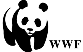 WWF y EFE impulsarán la información medioambiental y sobre cambio climático